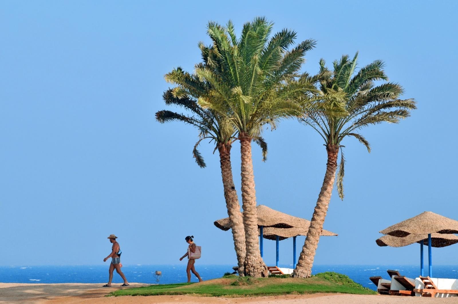 rejser til egypten i januar