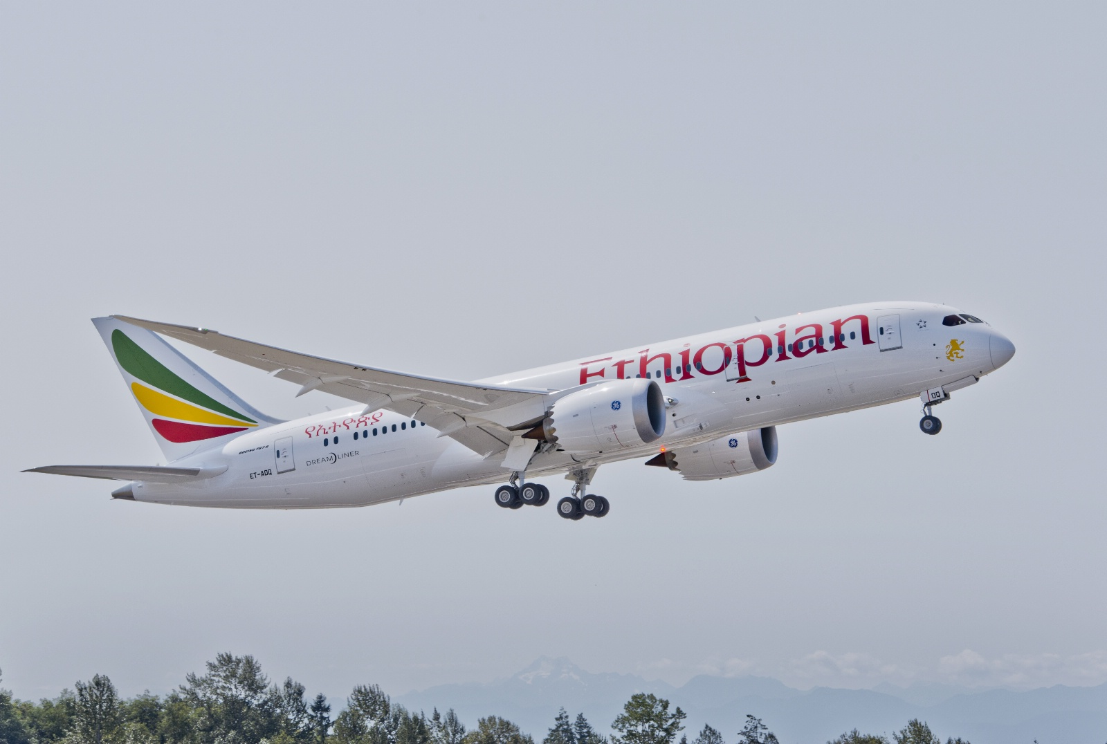 Ethiopian Airlines Boeing 787-8 Dreamliner.