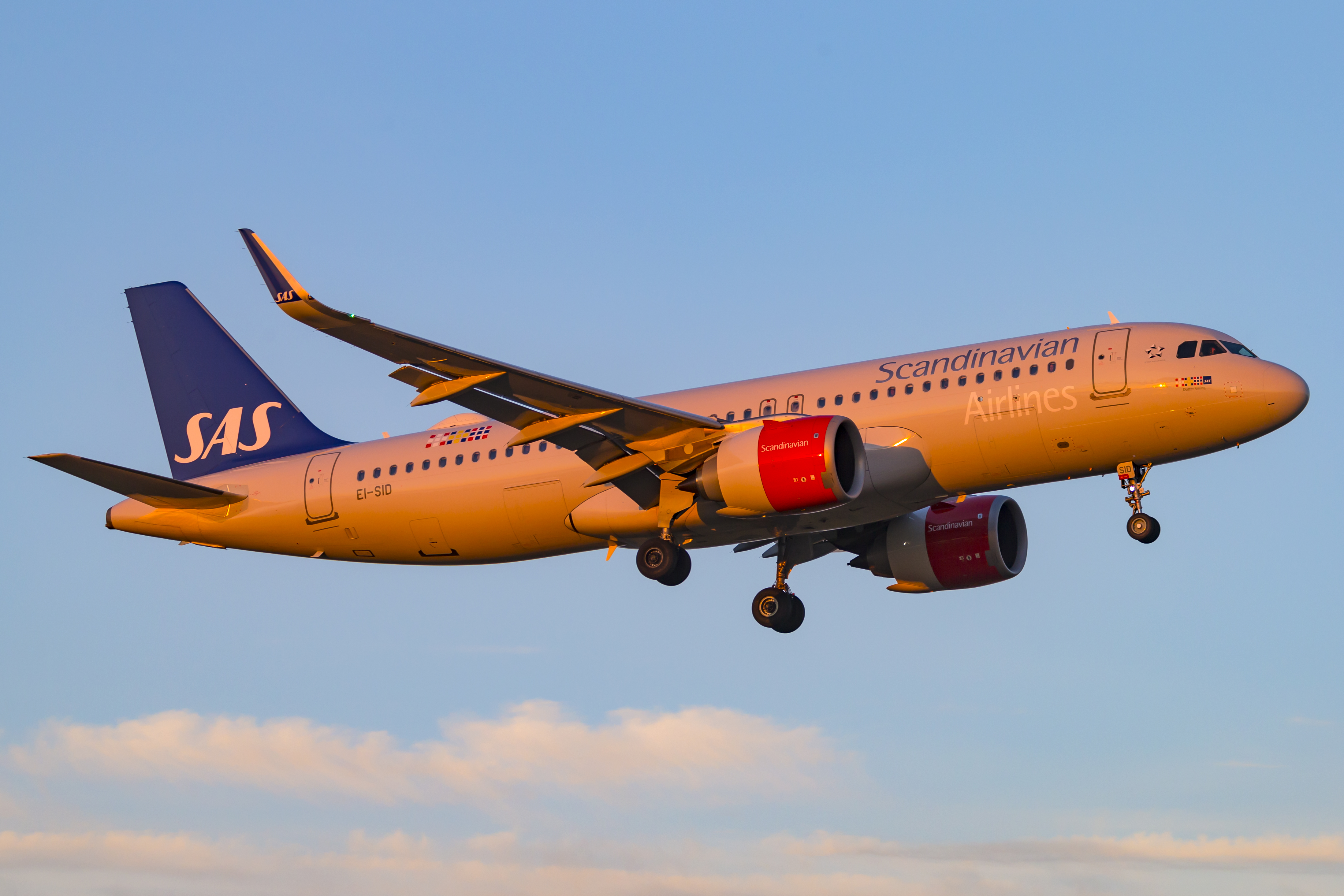 Airbus A320-200neo fra SAS Irland (Foto: © Thorbjørn Brunander Sund, danishaviationphoto.com)