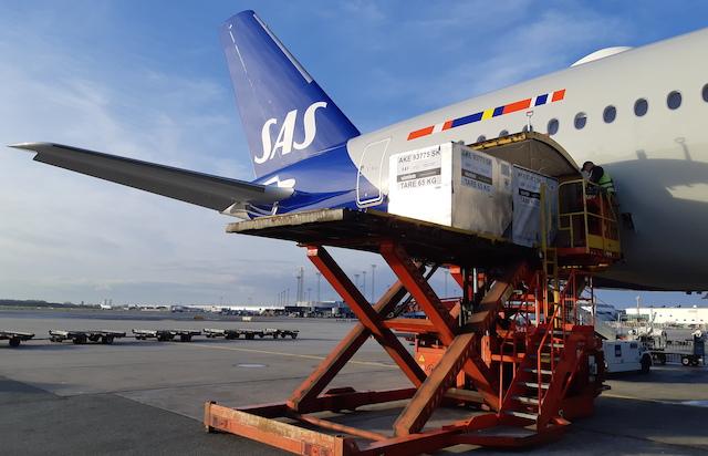 Et SAS-fly lastes med fragt. Foto: SAS Cargo