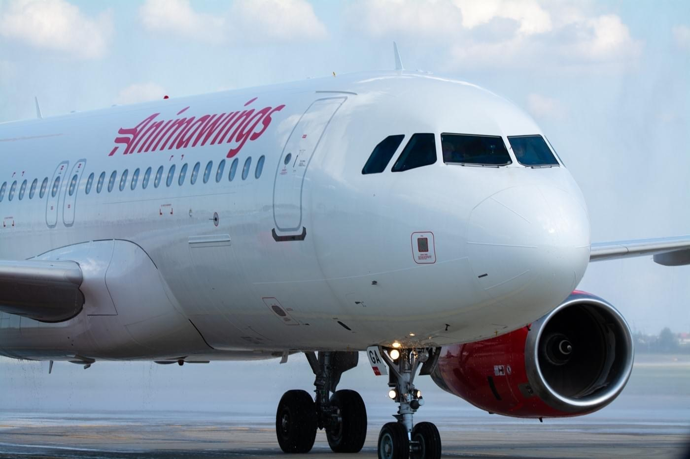 Airbus A320 fra Animawings. (Foto: Animawings | Facebook)
